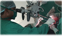 Micro Neurosurgery Procedures