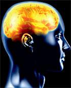 Neurosurgical Procedures at Neurology Hospital